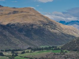A New Zealand Adventure Begins