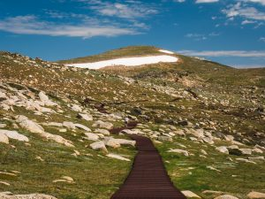 Mt Kosciuszko Summit Hike