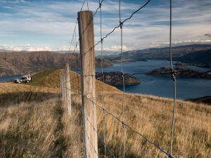 Wanaka Wandering & the value of photo tours
